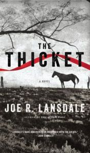 The-Thicket